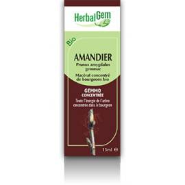 MACERAT AMANDIER BIO HERBALGEM circulation sanguine