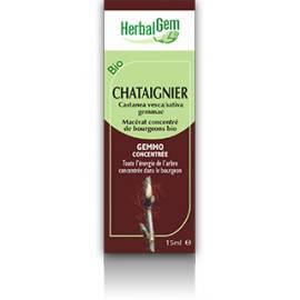 MACERAT CHATAIGNIER BIO HERBALGEM varices et cellulite