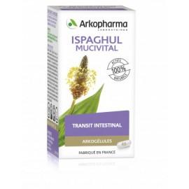 ARKOGELULES ISPAGHUL-MUCIVITAL Fonctions intestinales