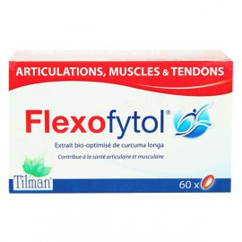 FLEXOFYTOL articulations capsules 60
