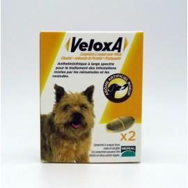 VELOXA Vermifuge Chien 2 comprimés