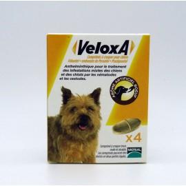 VELOXA Vermifuge Chien 4 comprimés
