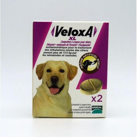 VELOXA XL Vermifuge Chien 2 Comprimés